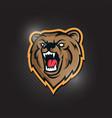 modern professional bear logo for a sport team vector image vector image