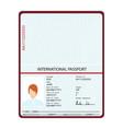 passport identification document vector image vector image