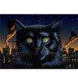 Black Cat Town vector image vector image