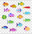 cute stickers of sea marine fish set o vector image