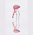 flamingos are reflected in water vector image vector image