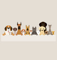 group of dog breeds holding banner vector image