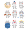 set of cute kitten with different emotions the vector image vector image