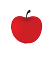 big red apple vector image vector image
