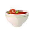 bowl fresh eco hot tomato soup vegan dish vector image