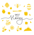 Design elements honey coloured vector image