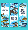 Fresh fish banner for seafood and fishing design vector image