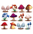 M ushroom set vector image
