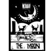 Moon Tarot vector image vector image