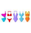 set women swimsuits colorful bikini vector image