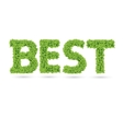 Best text of green leaves vector image vector image