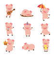 cartoon pig cute smiling pigs playing in mud vector image