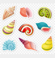 cartoon sea shells stickers set on the vector image vector image