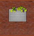 old brick wall with grapes vector image