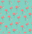 Pink flamingo seamless pattern for summer season