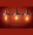 set edison light bulb with metal shade vector image vector image