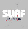 surf typography for t-shirt print vector image vector image