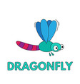 cartoon dragonfly flashcard for children vector image