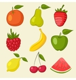 fruit and berries icons vector image