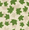 LeavesHerbarium02 vector image