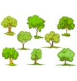 Set of leafy green trees vector image vector image
