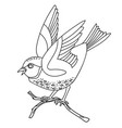 song bird 6 vector image vector image