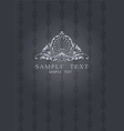 Dark Gray Ornate Cover vector image