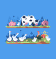 animals on farm vector image