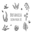 botanica - stylized eight items monochrome icons vector image