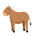 cute ox manger character catholicism vector image vector image