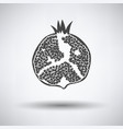 icon of pomegranate vector image