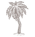 island nature palm tree growing from sand vector image vector image