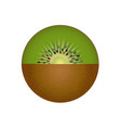 kiwi fruit isolated vector image