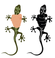 salamander in hand vector image