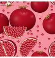 seamless texture of pomegranate vector image vector image