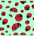 summer seamless pattern with ladybirds vector image vector image