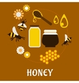 Beekeeping and fresh Honey flat concept vector image