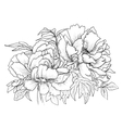 Beautiful hand drawn of vector image vector image