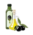 bottles with Olives oil vector image vector image