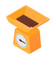 domestic weigh scales vector image vector image