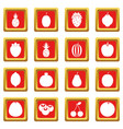 fruit icons set red vector image vector image