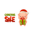 happy cute cartoon pig with gift present and text vector image