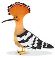 hoopoe bird vector image vector image