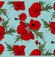 nature floral poppy pattern image red vector image vector image