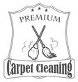 premium carpet vector image vector image