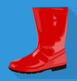 rubber boots woman shoes isolated flat icon vector image