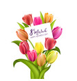 beautiful red tulips isolated on white background vector image