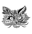 beautiful abstract cat vector image vector image