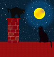Black cats on the roof vector image vector image