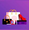 buyings in paper bags vector image vector image